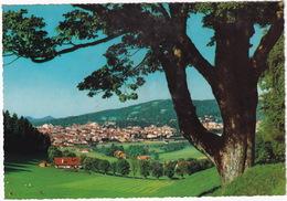 La Chaux-de-Fonds - Vue Générale  - (Suisse/Schweiz) - NE Neuchatel