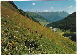 Samnaun 1850 M (Schweiz) Mit Tiroler Alpen - (Suisse/Schweiz) - GR Grisons