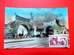 Tunisie - Tunis - Premier Jour N°379 - 29/5/1954 - Porte Bab El Kadrah - Carte Maximum - FDC