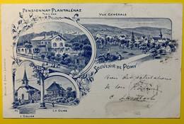 8919 - Souvenir De Pomy Pensionnat Plantalénaz Litho - VD Vaud