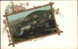 11504480 Karlsbad_Eger Teilansicht Blumen Karlsbad_Eger - Schneeberg