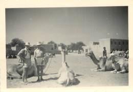 MALI - PERMISSION SUR UNE PLACE DE GAO - DRAOMADAIRES - 1953 - Lieux