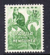 Papua New Guinea 1953-8 ½d Tree Kangaroo, MNH, SG 1 - Papua New Guinea