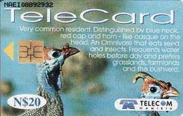 Namibia Chip N$ 20, Birds Of Namibia, Used - Namibia