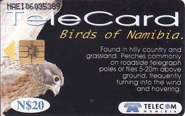 Namibia Chip N$ 20, Birds Of Namibia, Used - Namibie