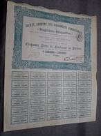""""""" Magnésio-Briquettes """" 50 Parts De Fondateur Au Porteur : N° 43401 à 43450 ( Voir Photo ) - Acciones & Títulos"""