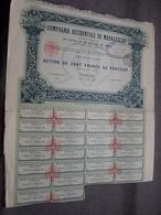Cie Occidentale De MADAGASCAR : Action De Cent Francs Au Porteur : N° 056,408 ( Voir Photo ) - Actions & Titres
