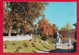 CARTOLINA VG ITALIA - TORINO - Parco Del Valentino - Scorcio - 10 X 15 - 1958 - Parcs & Jardins