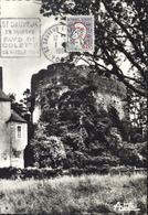 CP Saint Sauveur En Puisaye Yonne Tour Ovale Château CAD Daguin St Sauveur En Puisaye Pays Colette Vieille Tour 1 10 64 - Storia Postale