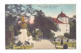 0-8800 ZITTAU, König-Albert-Denkmal, Stadtgärtnerei Und Blumenuhr, 1910 - Zittau