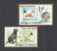 I1047 ANTIGUA & BARBUDA FAUNA PETS DOGS OF THE WORLD YEAR OF THE DOG 2BL MNH - Hunde