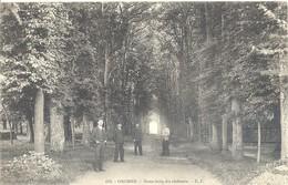 Orcher - Sous-bois Du Château - France