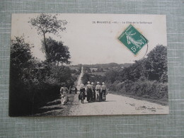 CPA 44 MAUVES LA COTE DE LA SEILLERAYE ANIMEE FEMMES - Mauves-sur-Loire