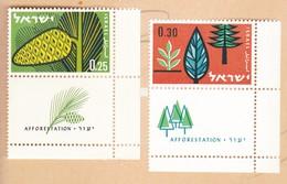 ISRAELE Gomma Integra, Non Linguellato 1961 Rimboschimento. - Unused Stamps (with Tabs)