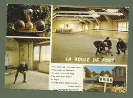 CARTE POSTALE 49 MAINE ET LOIRE BRION MULTIVUES BOULE DE FORT - Autres Communes