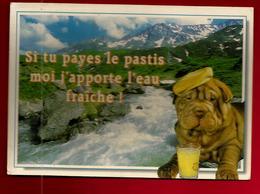CP Humour Si Tu Payes Le Pastis J'apporte L'eau Fraîche - Chien Dog Shar-Pei Montagne Torrent Rivière Apéro Alcool ... - Chiens