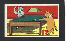 Chromo Chat Cat Position Humaine Habillé Publicité L'alsacienne Alsace Billiard Billard - Animali Abbigliati