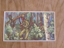 TREFIN L' Abeille De Bie Chromo N° 30  Le Débarquement En Europe 2 ème Guerre Mondiale Trading Card Vignette Chromos - Confiserie & Biscuits