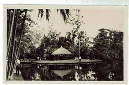 MAURITIUS - Jardin Botanique Des Pamplemousses Voyagée 1964- Bon état- Format 9x14 - Mauricio
