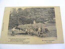 C.P.A.- Environs De Brive (19) - Les Foins - Le Ramassage - Attelage Boeufs - 1910 - SUP (CM 72) - Autres Communes