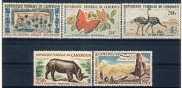 """1962-64 Cameroon MNH OG High Value Airmail Stamp Set Of 5 """"Animals"""" Yv. A53-56 - Cameroon (1960-...)"""