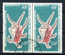 """1972 New Caledonia VF Used Pair Of High Value Airmail Stamps """"Shells"""" - Nouvelle-Calédonie"""