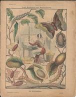 Couverture Cahier Collection Godchaux Les Animaux En Agriculture La Sériciculture - Protège-cahiers