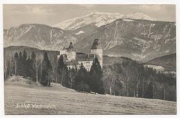 WARTENSTEIN AUSTRIA, SCHLOSS CASTLE, Year 1920 - Neunkirchen