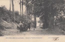 Schaerbeek  Bruxelles  Dans La Vallée Josaphat   Edit Lagaert N° 133  (Attelage Chien) - Schaarbeek - Schaerbeek
