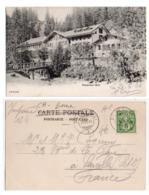 (Suisse) Berne 124, Rosenlaui-Bad, CPN 5341, Dos Non Divisé - BE Berne