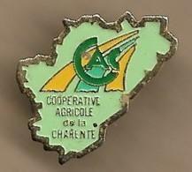 Pin's Coopérative Agricole De La Charente CAC - Amministrazioni