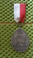 Medaille :Netherlands  -  25e H.T.K - Wios Epe   / Vintage Medal - Walking Association - Nederland