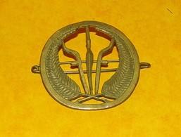 INSIGNE PAYS AFRICAIN  , FABRICANT ARTHUS BERTRAND PARIS , ETAT VOIR PHOTO. POUR TOUT RENSEIGNEMENT ME CONTACTER. REGARD - Army