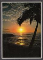 91638/ LUMIERE, Coucher De Soleil, Hawaii, *Sunset Moods On The Northshore Of Oahu* - Contraluz
