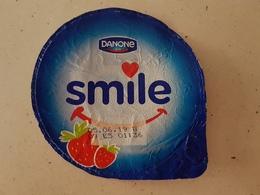 Yogurt Danone Witch Fruit Pieces - Milk Tops (Milk Lids)