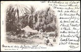 BISKRA Tente Sous Les Palmiers 1907 > B - Rhode-St.Genese - Biskra