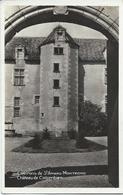 18 Cher Environs De  Saint Amand Montrond  Chateau De Colombier - Saint-Amand-Montrond