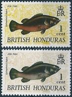 B6255 British Honduras Fauna Animal Fish ERROR - Fische