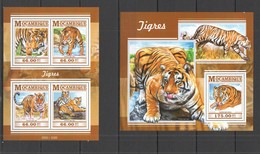 WW635 2015 MOZAMBIQUE MOCAMBIQUE FAUNA ANIMALS WILD CATS TIGERS TIGRES KB+BL MNH - Big Cats (cats Of Prey)