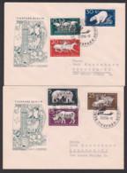 Tierpark Berlin Fridrichsfelde Eisbär, Elefant, Bison, Nashorn, Pelikan DDR 551/56, Komplett - Cartas