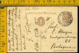 Regno Cartolina Intero Postale Michetti San Vito Al Tagliamento - Marcofilía