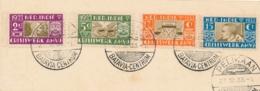 Nederlands Indië - 1933 - AMVJ Serie Met Pelikaanstempel Op Kartonnetje - Niederländisch-Indien