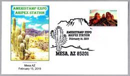 AMERIPEX STATION - CACTUS. Meza AZ 2019 - Cactus