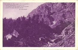 """Scrittori, Poesie (F. Sacchetti) """"Noi Siamo In Alpe Presso Ad Un .."""" Paesaggio Alpino, Stamp 20 C X° Ann. Marcia Su Roma - Scrittori"""