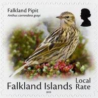 Falkland Islands - 2019 - Small Birds - Anthus Correndera - Mint Self-adhesive Booklet Stamp - Falkland Islands