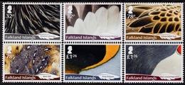 Falkland Islands - 2019 - Bird Feathers - Mint Stamp Set - Falklandinseln