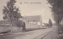 AM50 Waterloo, Ferme De La Hale Sainte - Waterloo