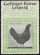 Leipzig: Rheinländer Huhn Reklamemarke - Vignetten (Erinnophilie)