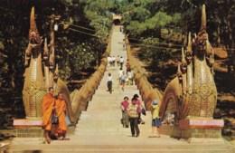 AM45 Main Stairs To Phura Thai Doi Suthep Mountain, North Thailand - Thailand