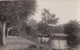 AO94 RPPC - Unidentified River Scene - Photographs